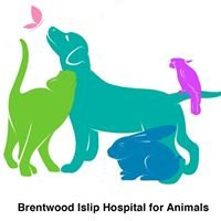 Brentwood-Islip Hospital For Animals