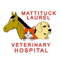 Mattituck-Laurel Veterinary Hospital