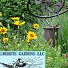 Alwerdts Gardens