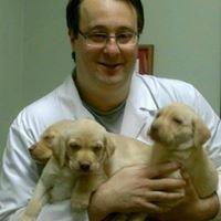 Four Paws Animal Hospital of Amityville