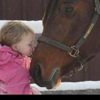 Plum Grove Equestrian