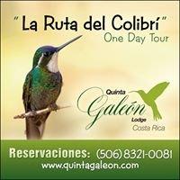 La Ruta del Colibrí - The Hummingbird Experience / Costa Rica
