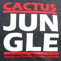 Cactus Jungle