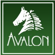 Avalon Stables
