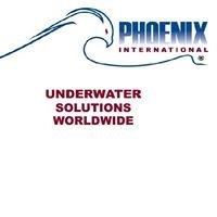 Phoenix International Holdings, Inc.