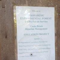 Massabesic Experimental Forest