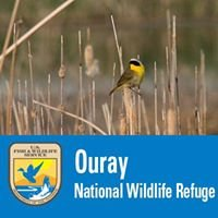 Ouray National Wildlife Refuge
