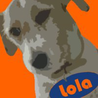 Mad Dog Lola eMarketing
