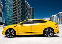 Luxury Car Rental Dallas   Exotic Car Rental Dallas