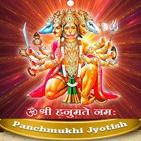 Astrologer Panchmukhi Jyotish – Ashok Joshi