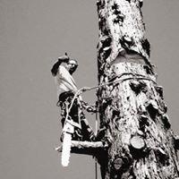 Foothill Sierra Tree Service
