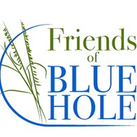 Friends of Blue Hole
