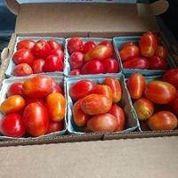 Elfrink Farm and Produce