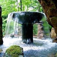 Crary Waterfalls & Aquatic Nursery