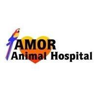 Amor Animal Hospital