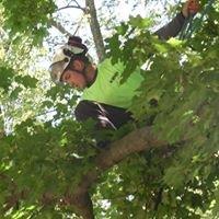 Tree Pros LLC