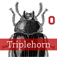 OSU Triplehorn Insect Collection