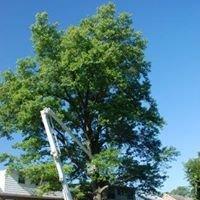 Tree Health Pros