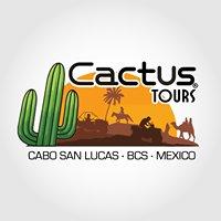Cactus Tours