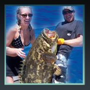 Simply Hooked Sport Fishing: Fishing Charters, Indian Rocks Beach FL