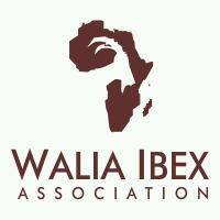 Walia Ibex Expedition