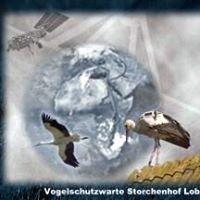 Vogelschutzwarte Storchenhof Loburg e.V.