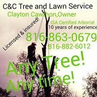 C&C Tree and Lawn service pro
