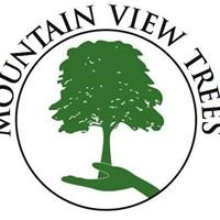 Mountain View Trees