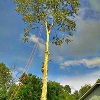 C&E Professional Tree Service