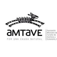 AMTAVE