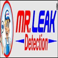 Mr. Leak Detection of Powder Springs