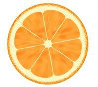 studio orange interiors