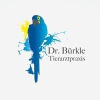 Tierarztpraxis Dr. Bürkle - Bird Consulting International