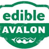 Edible Avalon, a program of Avalon Housing