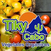 Tiky Cabo