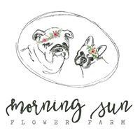 Morning Sun Flower Farm