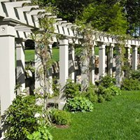 Mary Adams Lines Landscape Design & Installation Services