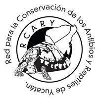 Red para la Conservación de los Anfibios y Reptiles de Yucatán