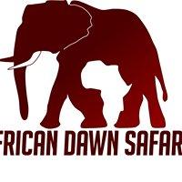 Kruger Safari - African Dawn Safaris