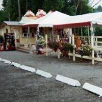 Cone_E_Island Ice Cream