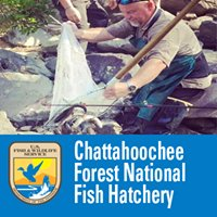 Chattahoochee Forest National Fish Hatchery