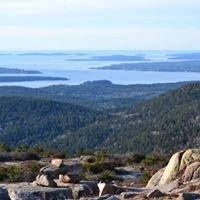 Acadia & Down East Maine Birding Trail
