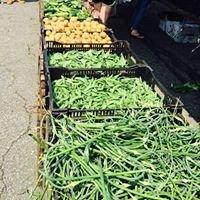 Village of Monroe Farmers Market