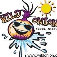 Wild Onion Restaurant, Alden Michigan