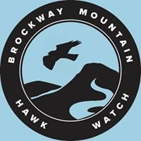 Brockway Mountain Hawk Watch
