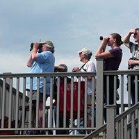 New Hampshire Audubon Carter Hill Raptor Observatory
