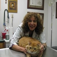 Animal Healing Arts of Carroll Gardens