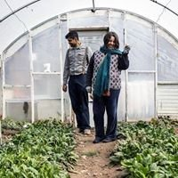 Urban Agriculture Alliance