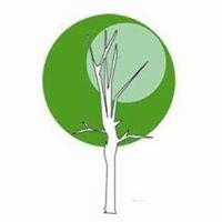Green Designs Landscaping