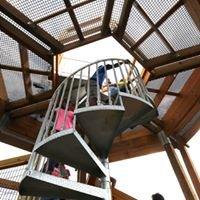 The Kalberer Family Emergent Tower at The Holden Arboretum